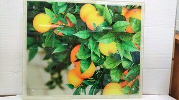 Защитное стекло на стену Апельсиновое дерево фото 1