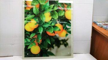 Защитное стекло на стену Апельсиновое дерево фото 2