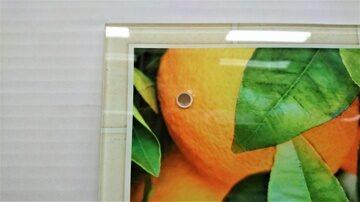 Защитное стекло на стену Апельсиновое дерево фото 3